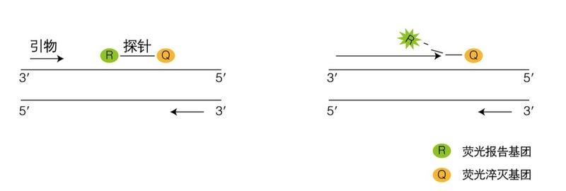 4.2.jpg