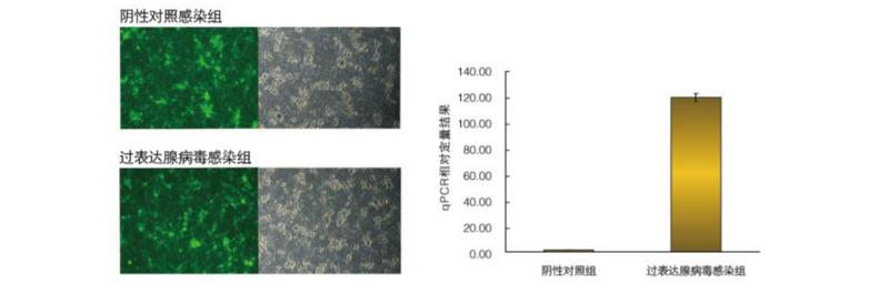 QQ圖片5.png